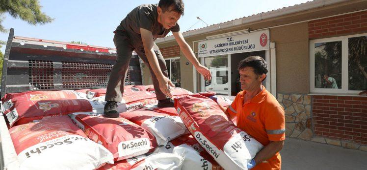İzmir Gaziemir'den yangınzede can dostlara malzeme desteği