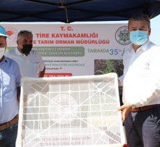 İzmir Tire'de incir üreticilerine kerevit dağıtılıyor